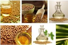 Ukrainian soybean oil market